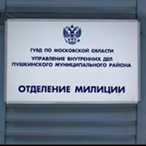 Отделения полиции Оршанки